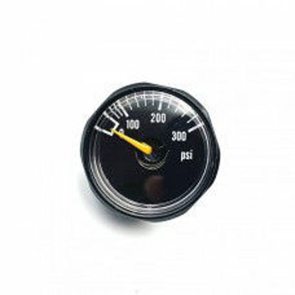 EPES 300 PSI Small pressure gauge - 1/8 NPT male thread